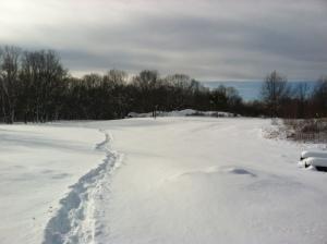 Silver Lake Winter Wonderland